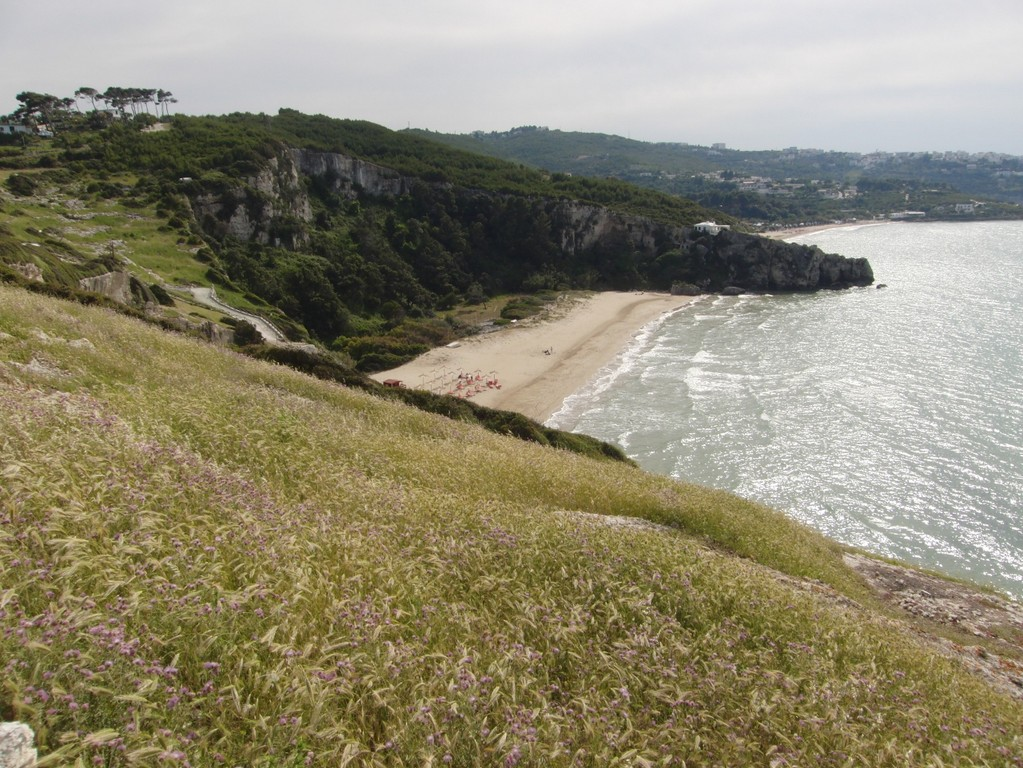 50_20190602_Peschici_fc31_spiaggia4 (1280x961) (Copia)